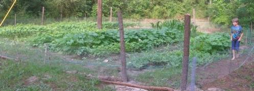 The Garden - 06-21-08